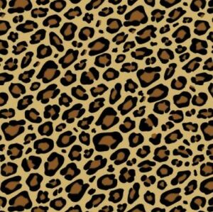 leopard printed animal print gift wrap wrapping paper tissue noah s