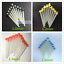 10Pc-Dental-Glass-Fiber-Post-1-2mm-Yellow-1-4-Red-1-6mm-Blue-1-8mm-Quartz-Screw thumbnail 9