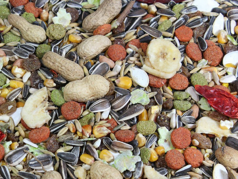 Pet Parred Tropical Mix Food Treat with Fruits & Seeds - 1KG