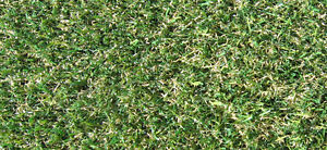 Artificial-Grass-Real-Life-20mm-Realistic-Lawn-Replacement-Fake-2m-x-1m