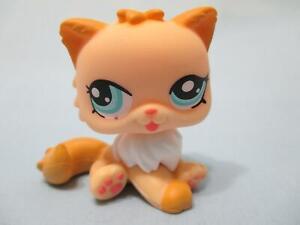 Littlest Pet Shop 1320 Orange White Peach Persian Cat Blue Eyes Authentic