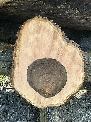 Ahorn Baumscheibe Holzscheibe 50x5 cm,Tischplatte