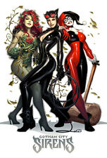 "Gotham City Sirens ~ Harley, Ivy, Cat woman 4""x6"" Printed Vinyl Sticker / Decal"
