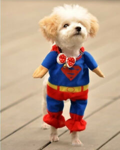 Pet-Cat-Dog-Puppy-Clothes-Costumes-Apparel-T-Shirt-Superman-Suit-for-Small-DogSq