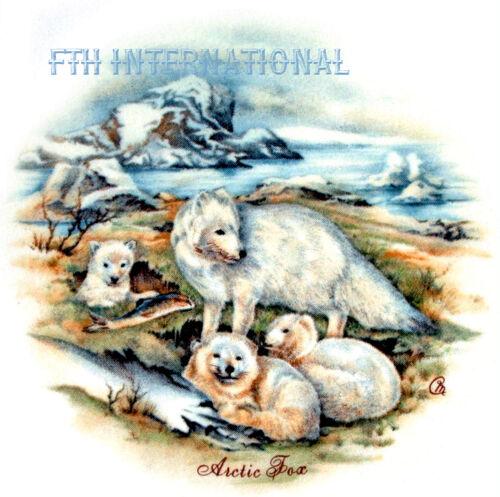 "A39 ~ Arctic White Fox Family on 9 Ceramic Decals 2 1//4/"" Round Snow Tundra Ice"