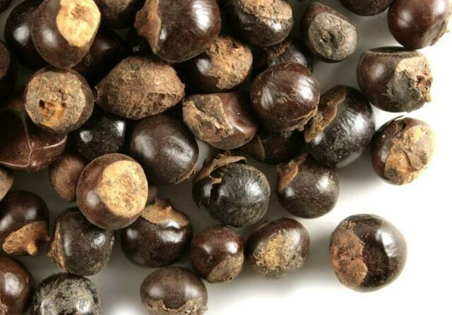 Guarana Seed Whole  >>>>    2 ounces