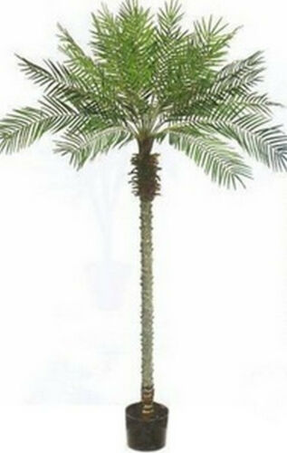 8/' Artificial Phoenix Palm Tree Pot Topiary Pool 7 5 6 Patio Date Coconut Areca