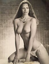 THE SUN PAGE 3 ORIGINAL PHOTO LESLEY ANNE VERY RARE
