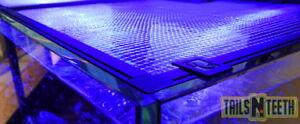 "48""x31"" R42082 Cut Out Parts Incl Objective Red Sea Customizable Diy Aquarium Net Cover"