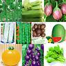 Garden Vegetable Seed Seasons Non-GMO seeds Bank Survival Fruit Organic Plant
