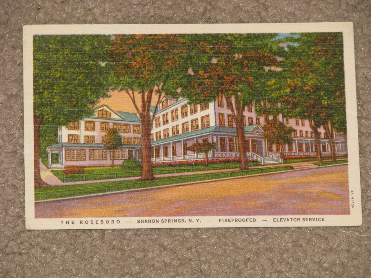 The Roseboro, Sharon Springs, N.Y., Fireproofed & Elevator Service-vintage card