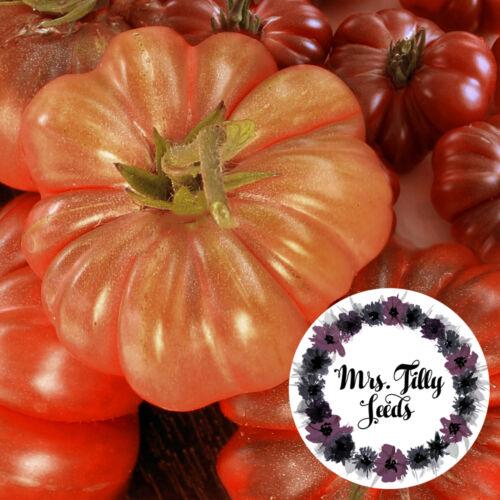 Montserrat Tomatensamen alte spanische Sorte Samen leckere Fülltomate gross