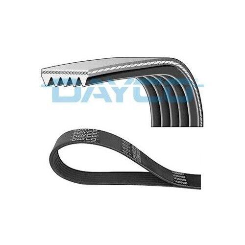 Dayco Courroie trapézoïdale crantées Mercedes 5pk1720