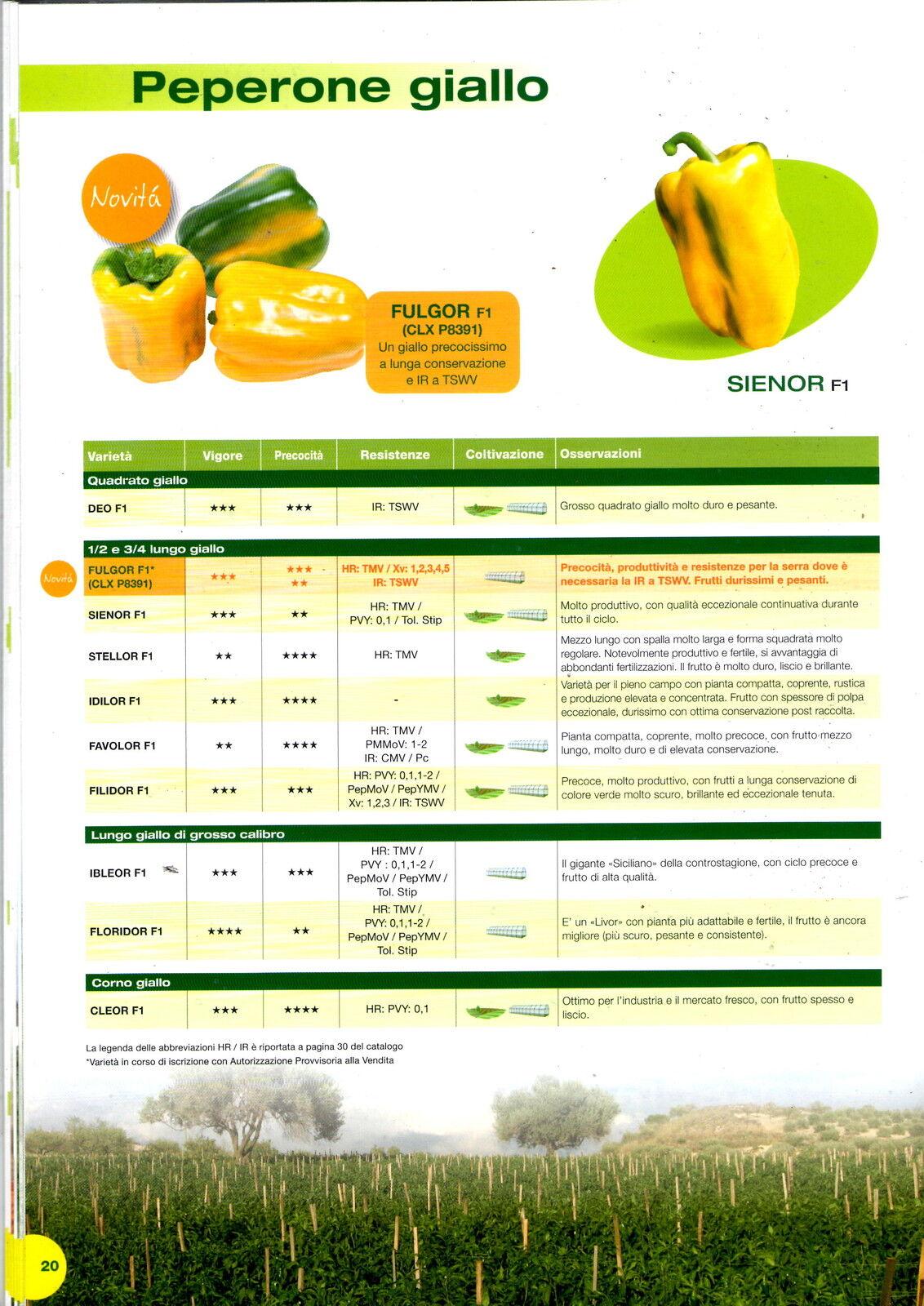 Clause sementi peperone amarillo ,corno, cleor f1 ,conf. x1000 semi