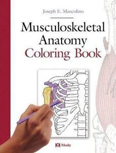 Musculoskeletal Anatomy Coloring Book By Joseph E Muscolino 2004