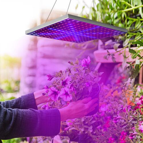 225//200 LED Panel Full Spectrum Plant Greenhouse Veg Flower Herb Grow Light US