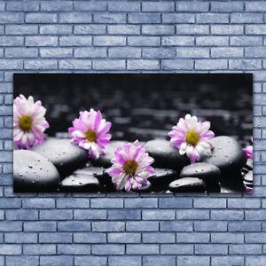 Wandbilder Glasbilder Druck auf Glas 140x70 Steine Kunst
