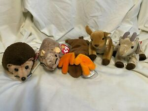 5 TY Beanie Babies Wild Animals - Prickles Tiptoe Chocolate Whisper Goatee
