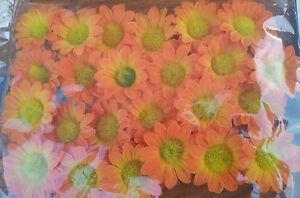 Details Zu 24 Stoffblumen Klebepunkt Kleben Basteln Tischdeko Streublumen Margerite Blüten