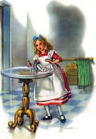 Alice In Wonderland Pink Dress Drink Me Quilting Fabric Block