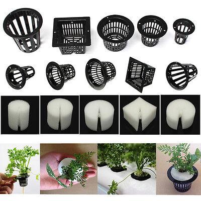 10x Mesh Pot Net Basket + Clone Cloning Collar Foam Insert Hydroponic Aeroponic