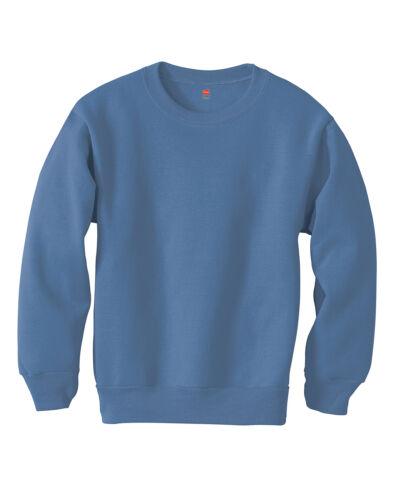 Hanes Boys Girls Crewneck Sweatshirt ComfortBlend EcoSmart Kids Youth Low Pill