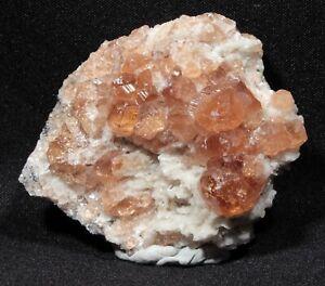 f27147df6 4.3 cm Gem Hessonite Garnet Crystals on Matrix, Jeffrey Mine, Quebec ...