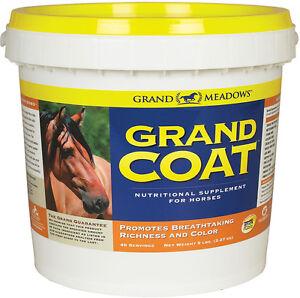 horse supplements