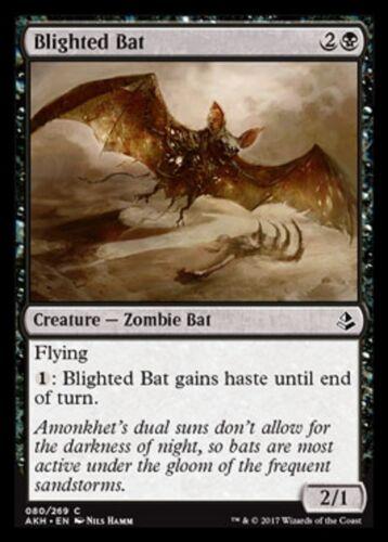 Blighted Bat NM X4 Amonkhet Black Common MTG
