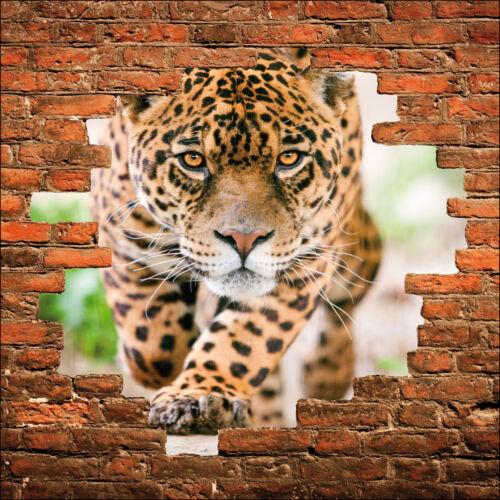 Wall sticker trompe l/'oeil leopard stone wall ref 835