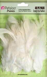 Mixed-FEATHERS-Ivory-40-per-Pack-approx-6cm-long-Petaloo