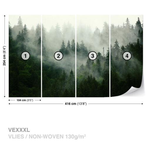 Papier peint mural photo facile installer Polaire Brumeux Forêt Vert Chambre Decor New