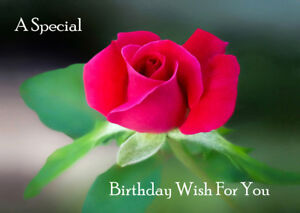 Image Is Loading FEMALE LADIES HAPPY BIRTHDAY GREETINGS CARD BEAUTIFUL ROSE