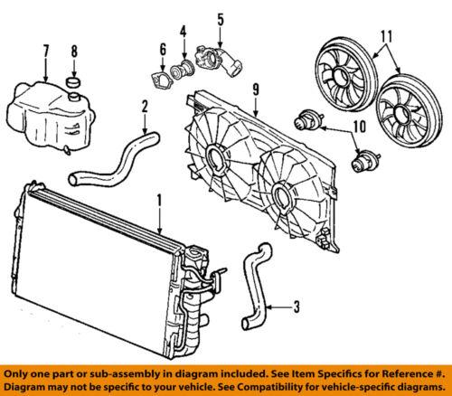 GM OEM Radiator Coolant-Lower Hose 15781527
