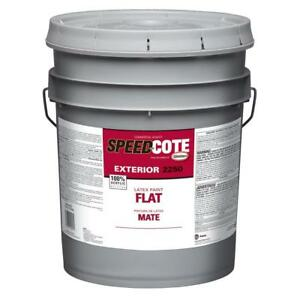 Image Is Loading Sd Cote Exterior Latex Flat Paint 5 Gallon