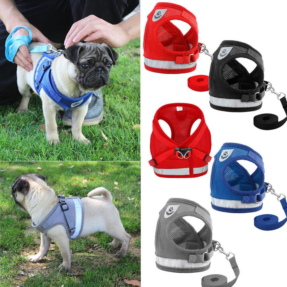 Dog Mesh Harness Pet Cat Harness Leash Set Walk Collar Safety Strap Vest 2