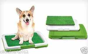Dog-Puppy-Potty-Pad-Trainer-Indoor-Grass-Litter-Training-Patch
