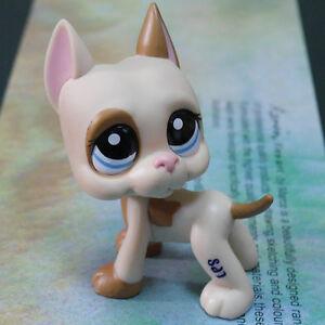 "LPS COLLECTION LITTLEST PET SHOP KAHKI PUBBY DOG RARE TOY 3"" #1647"