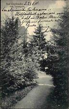 Bad Oeynhausen Ravensberger Mulde AK 1910 Park Parkanlage Tannen Partie Bäume