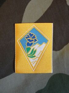 Ecusson-27-BIM-Brigade-d-039-Infanterie-de-Montagne-patch-badge-DIA-DA-DIM-Alpine