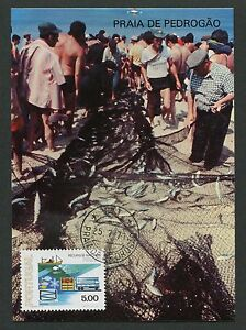 Portugal-MK-1978-Peche-Poissons-Fish-Brais-maximum-CARTE-MAXIMUM-CARD-MC-d3128