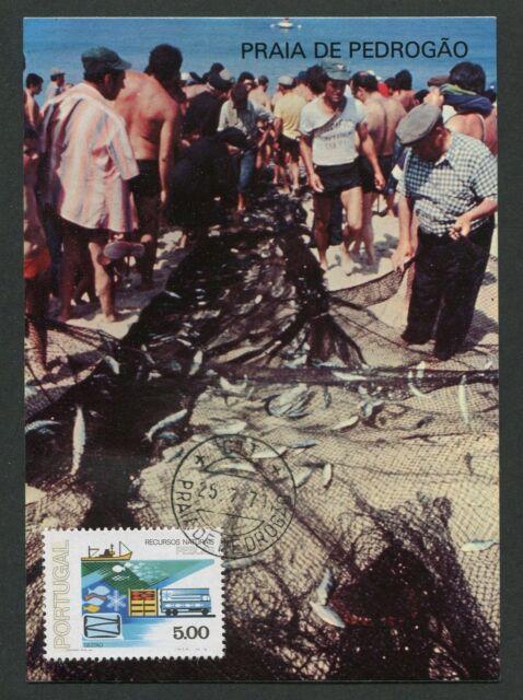 Portugal MK 1978 Pêche Poissons Fish Brais maximum CARTE MAXIMUM CARD MC d3128