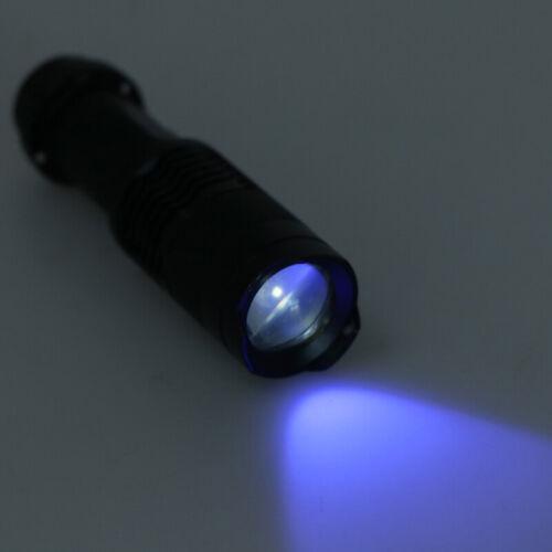 UV Ultra Violet LED Flashlight Blacklight Light 365 nM Inspection Lamp Torch/_CJX