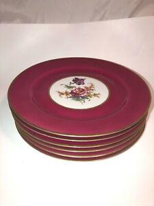 Antique Set of 6 Bavarian Tirschenreuth Floral Porcelain 10 1/2 Plates See Pics!