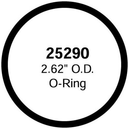 Stant 25290 Thermostat Seal