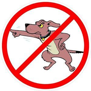 3-No-Bird-Dogs-Red-Union-Snitch-Hard-Hat-Helmet-Sticker-HH800