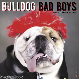 Gegia Calendario.Venda 2017 Ingles Gonzaga Georgia Bulldog Bad Boys Girls