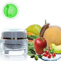 Skin Cell Renew Cream With Vitamin C, Hyaluronic Acid Aloe Vera Argan Oil 30 ML