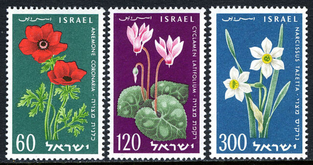 Israel 157-159, MNH. Flowers. Cyclamen, Anemone, Narcissus, 1959