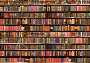 Image Is Loading Bookshelf Old Library Book Grunge Full Wall Mural